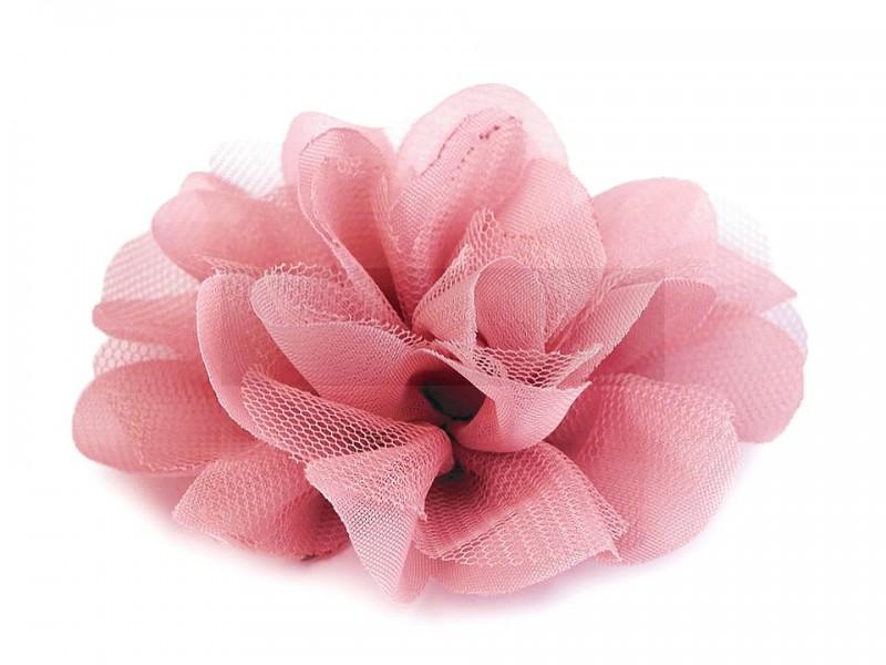 Szifon virág - Korall