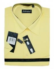 Goldenland rövidujjú ing - Napsárga