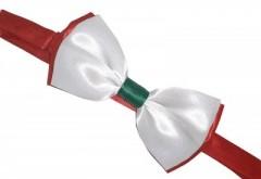 Zsorzsett szatén csokornyakkendő - Tricolor II.